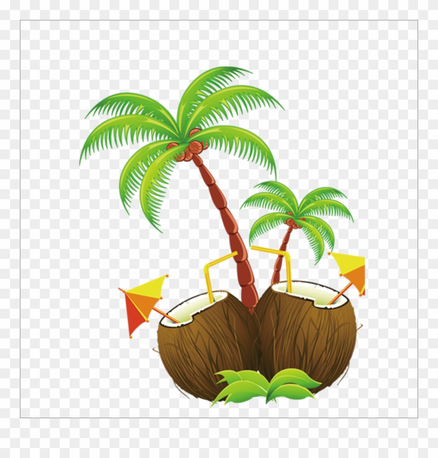 coconut # 5046161
