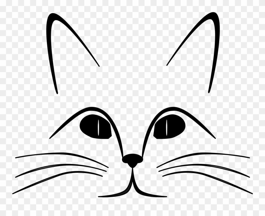 black-cat # 4849637