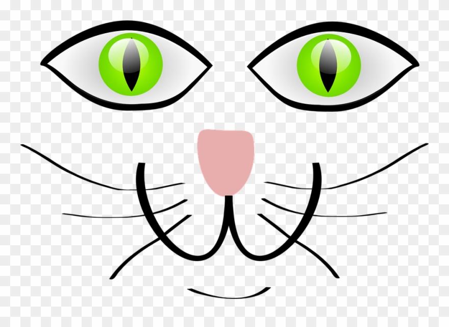 pete-the-cat # 4848348