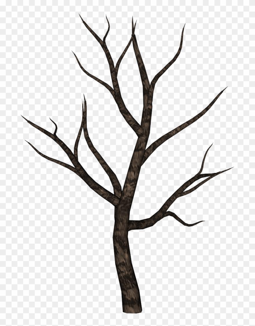 palm-tree # 4835043