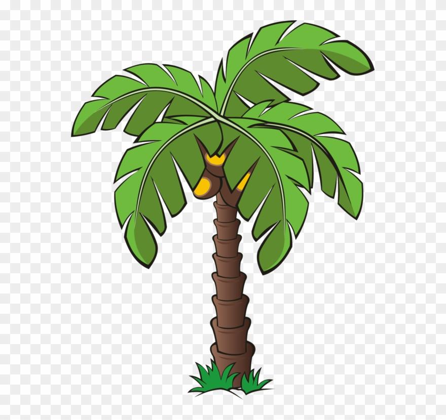 palm-tree # 4837596