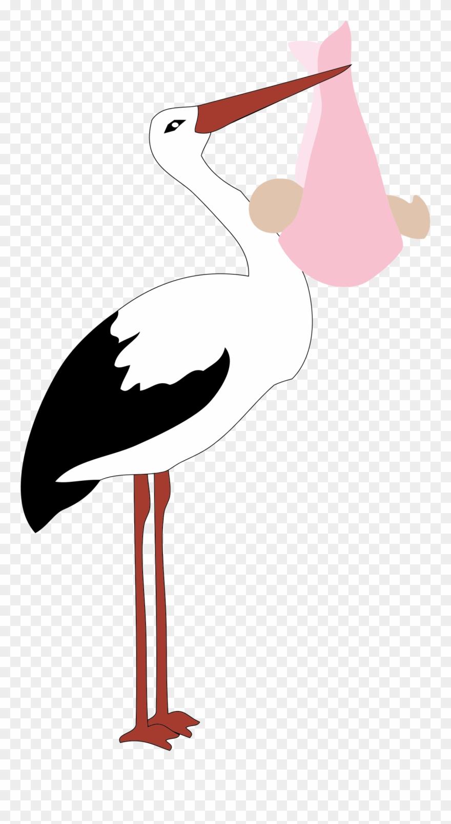 stork # 4874873