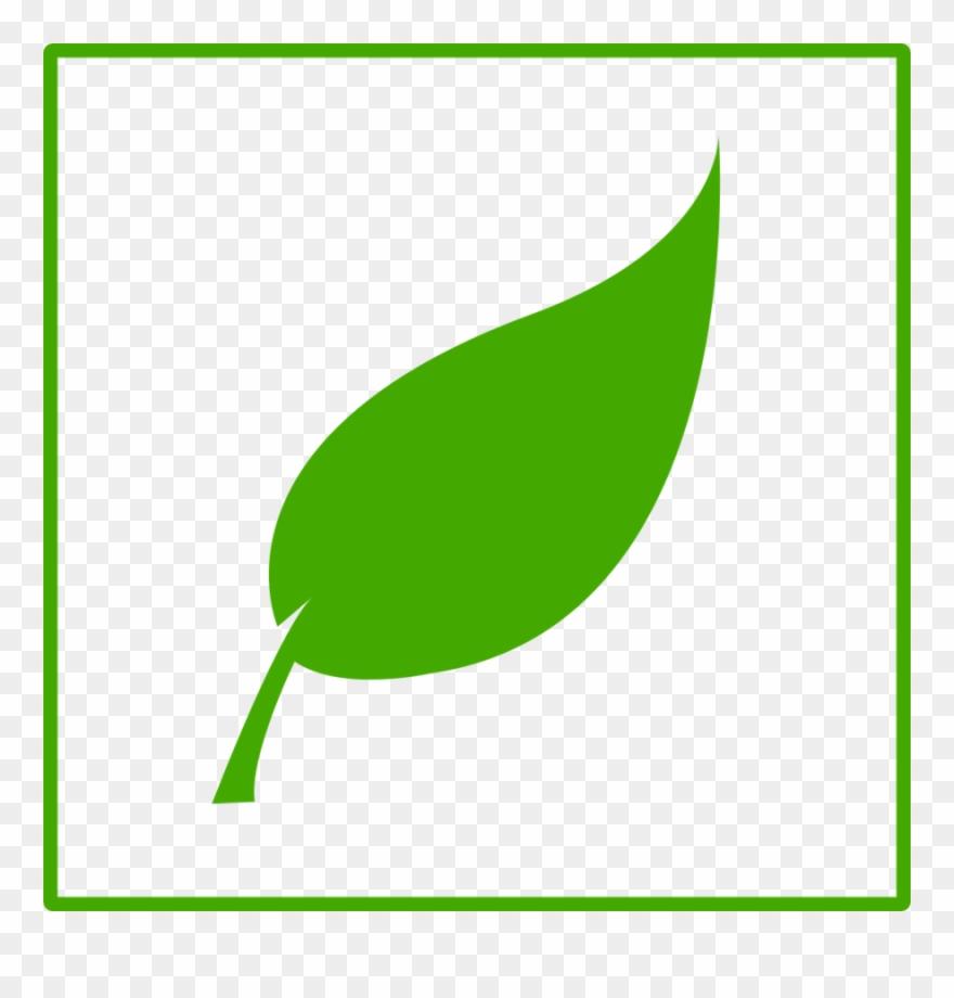 leaf # 4879479