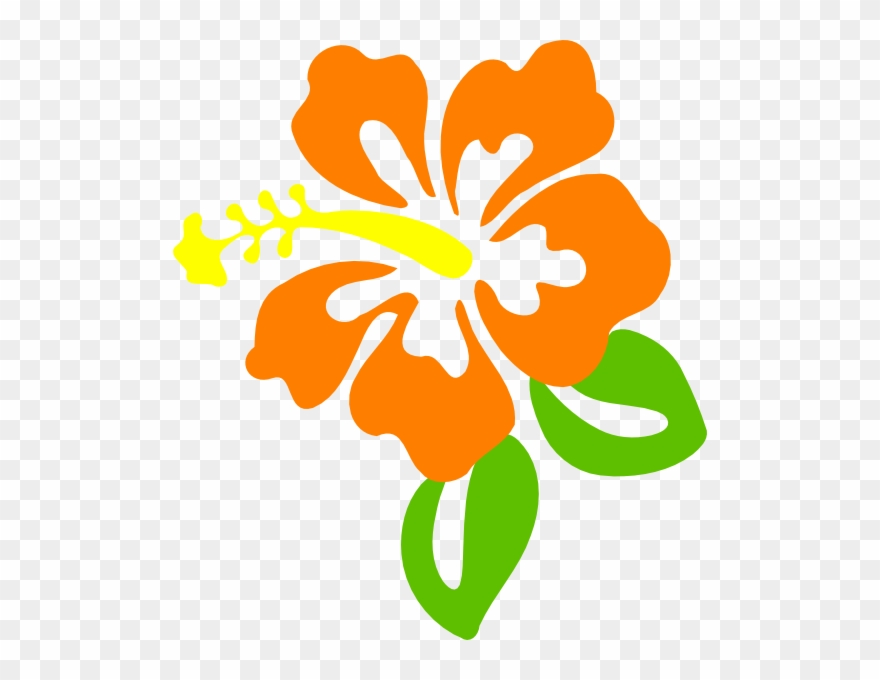 orange # 4883617