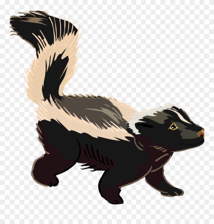 skunk # 4967792