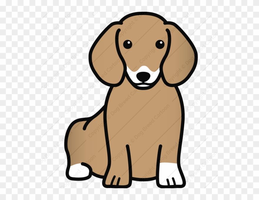 dog-breed # 4817295