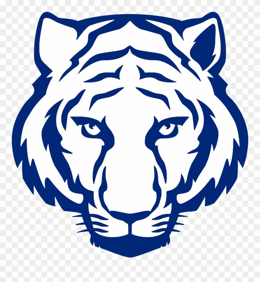 tiger # 4845509