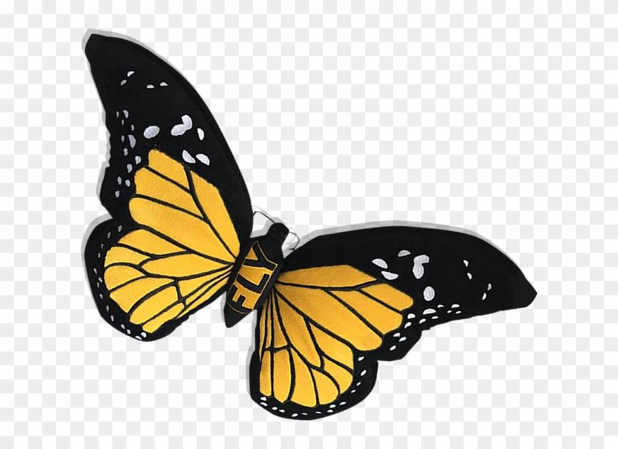 monarch # 4846691