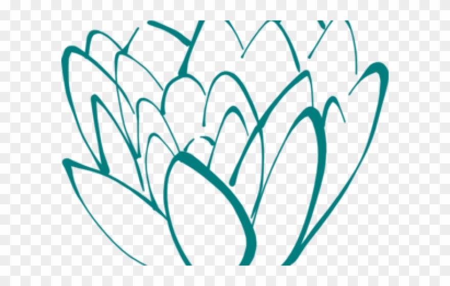 lotus # 4846077
