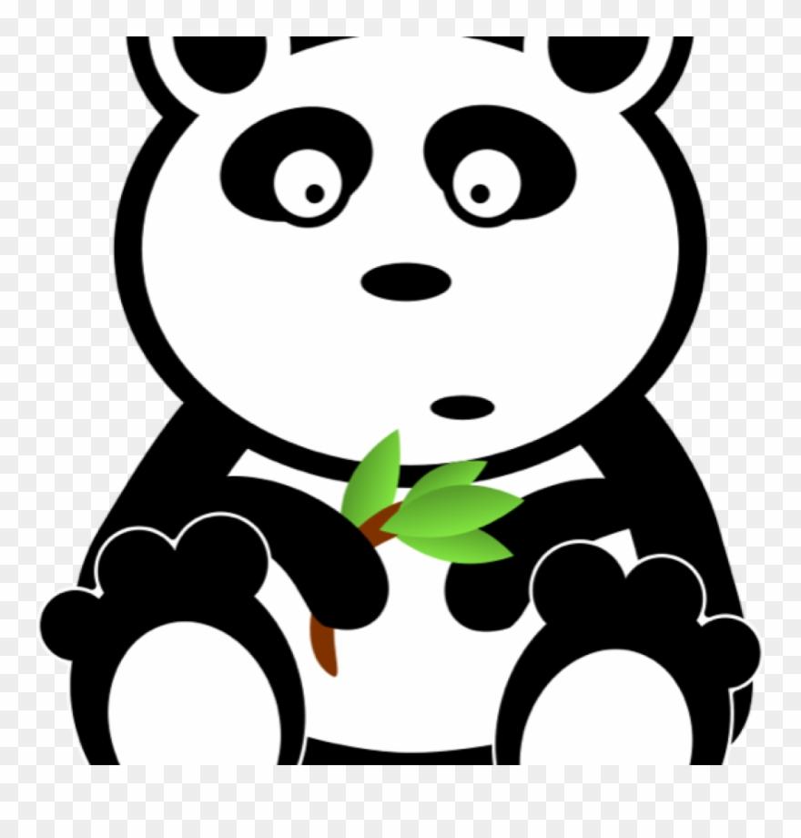 red-panda # 4844025