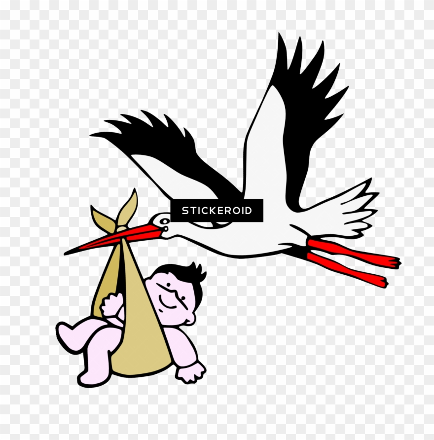 stork # 4844144