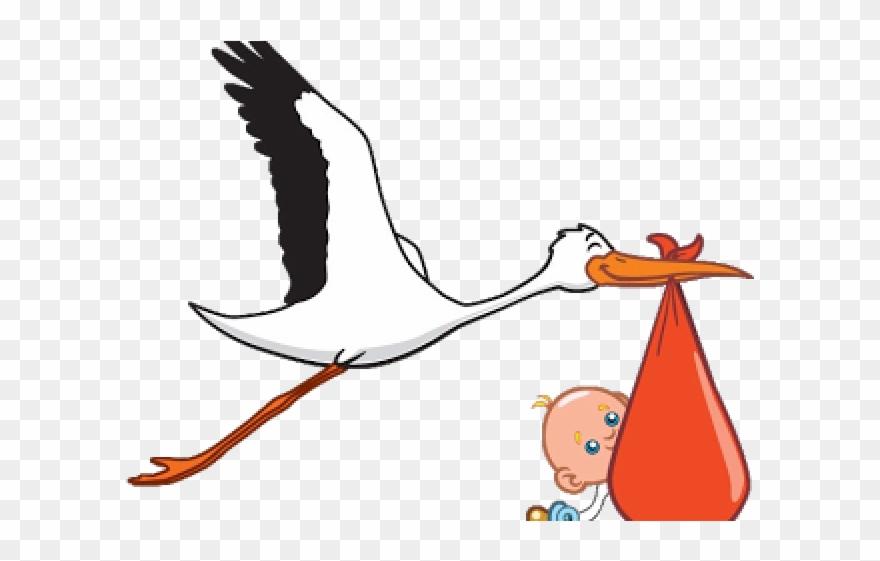 stork # 4844148