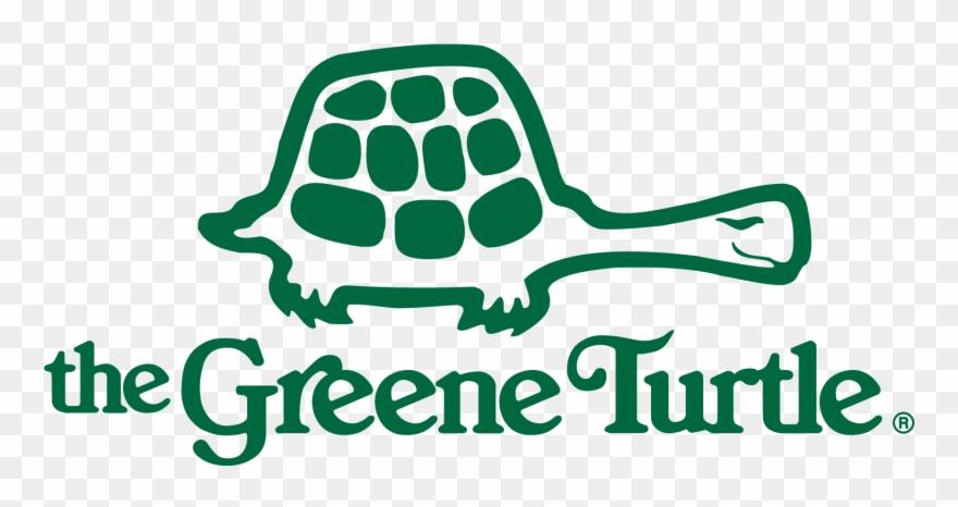 turtle # 4863341