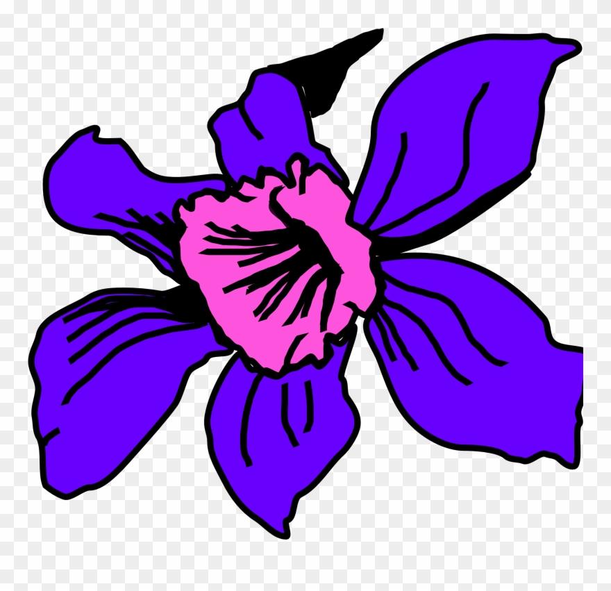 flowering-plant # 4862679