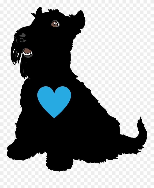 yorkshire-terrier # 4865454