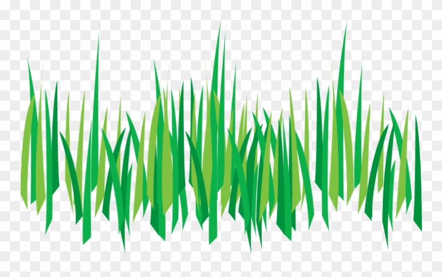 grass # 4866337