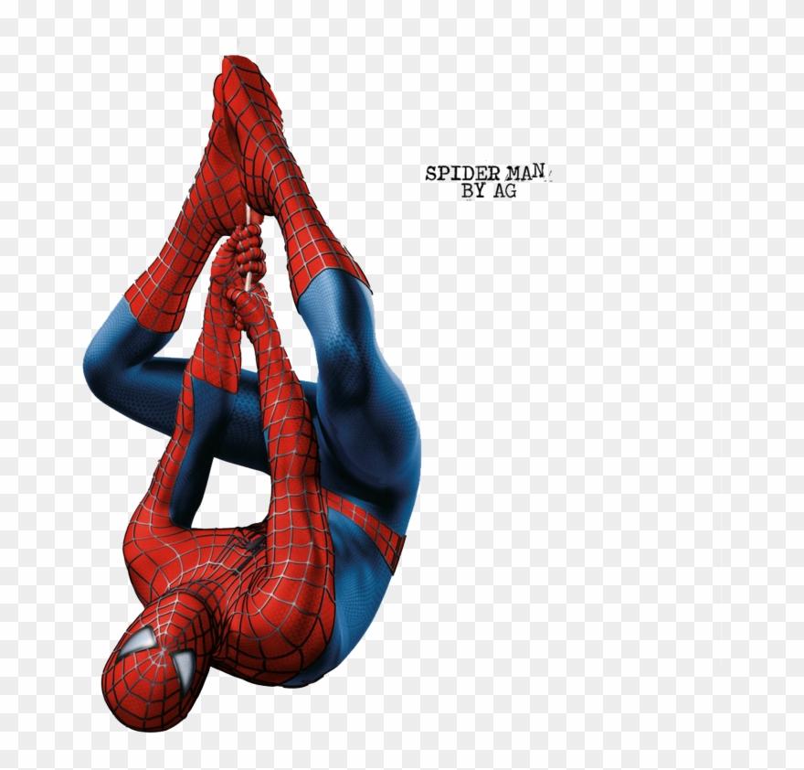 spider # 4860875