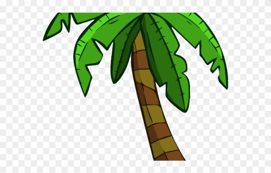 palm-tree # 4859067