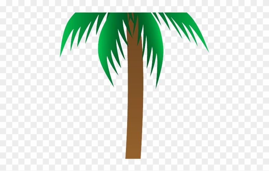 palm-tree # 4839944