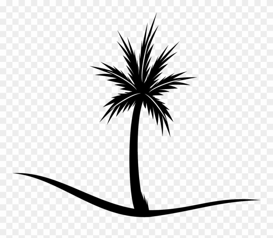 palm-tree # 4839713