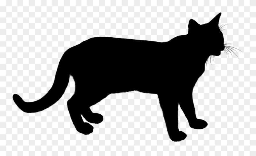 pete-the-cat # 4837405