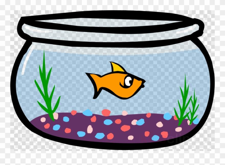 fish # 4836710