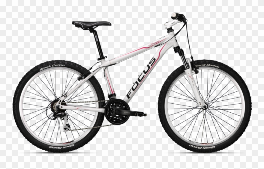 bicycle # 4839495