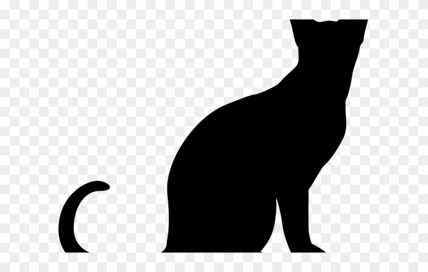 pete-the-cat # 4841351