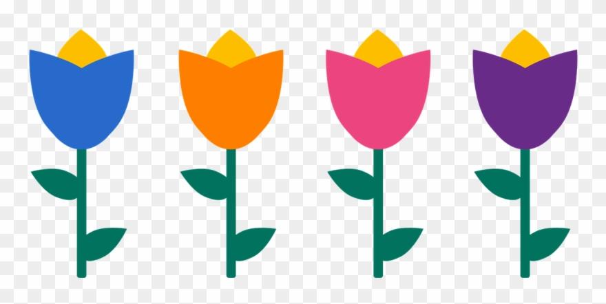 tulip # 4984112