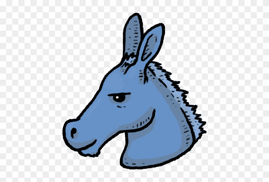 burro # 4980032