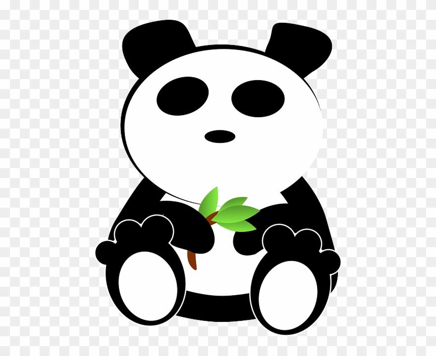 red-panda # 4980380