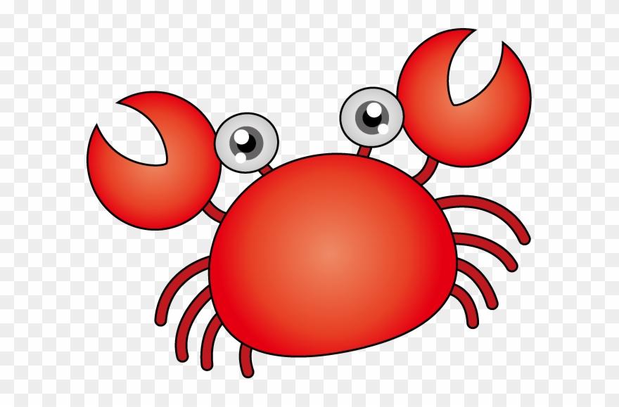 shrimp # 4981672