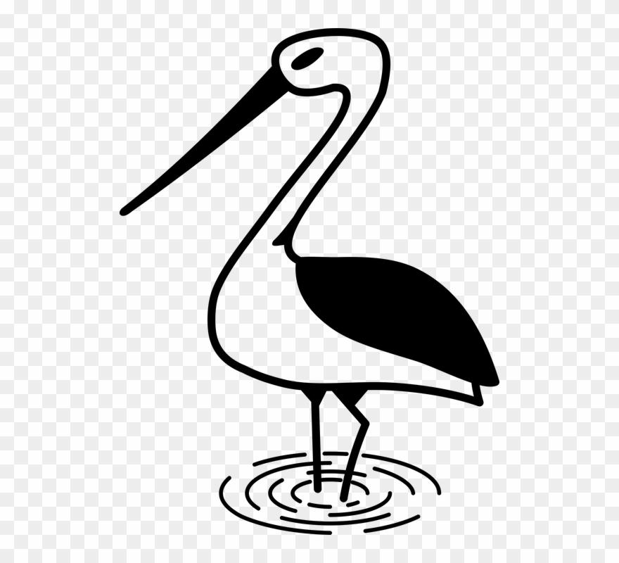 stork # 4955616