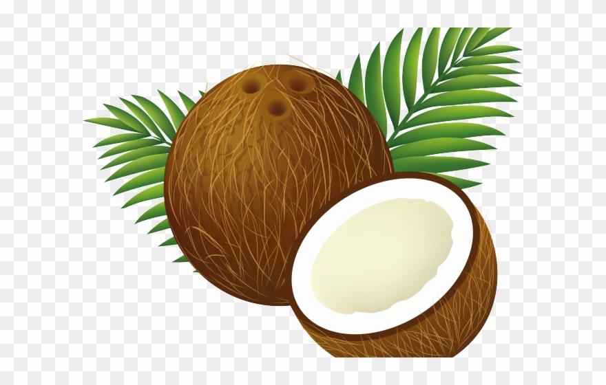 coconut # 4912614