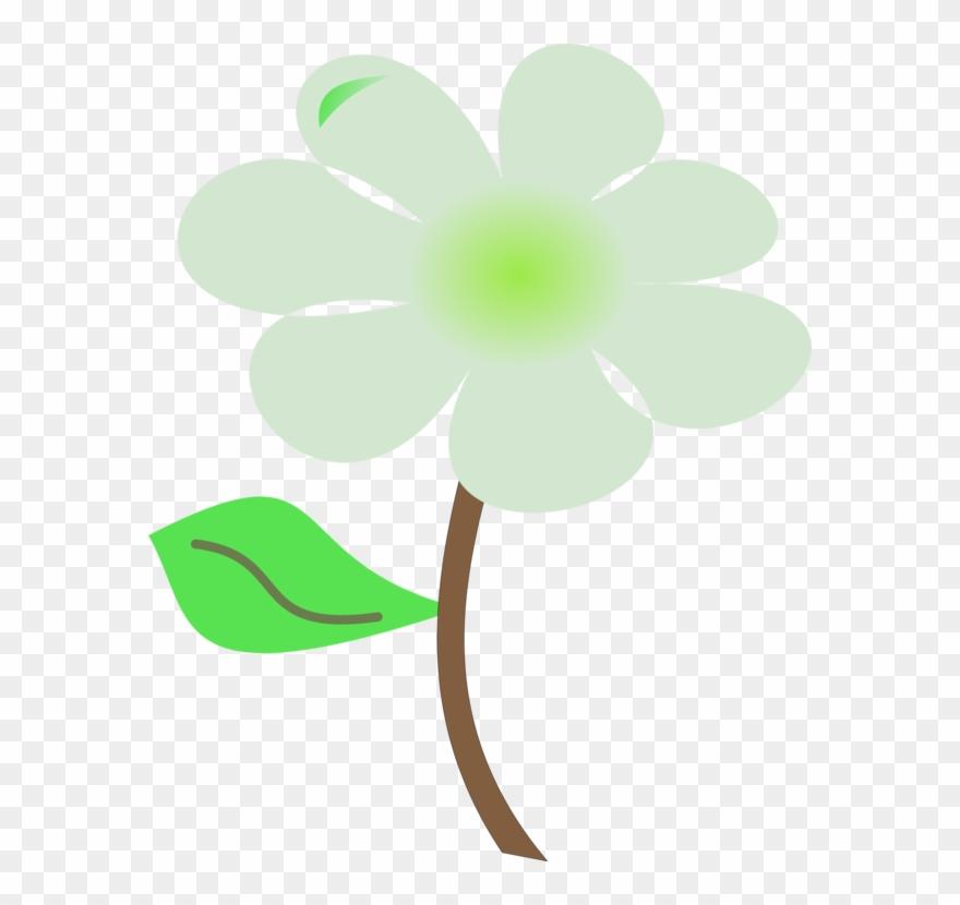 flowering-plant # 4988722