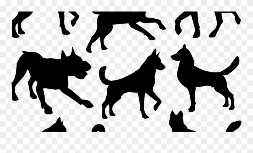 dog-breed # 4988794