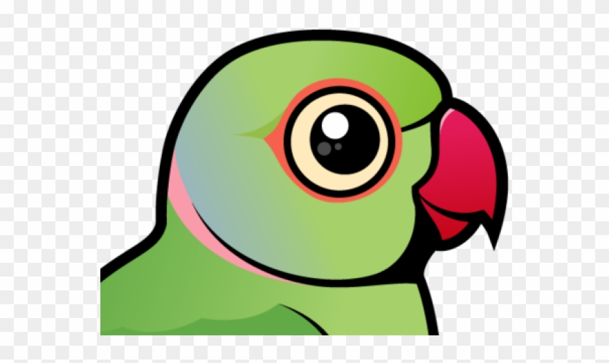 parrot # 4951419