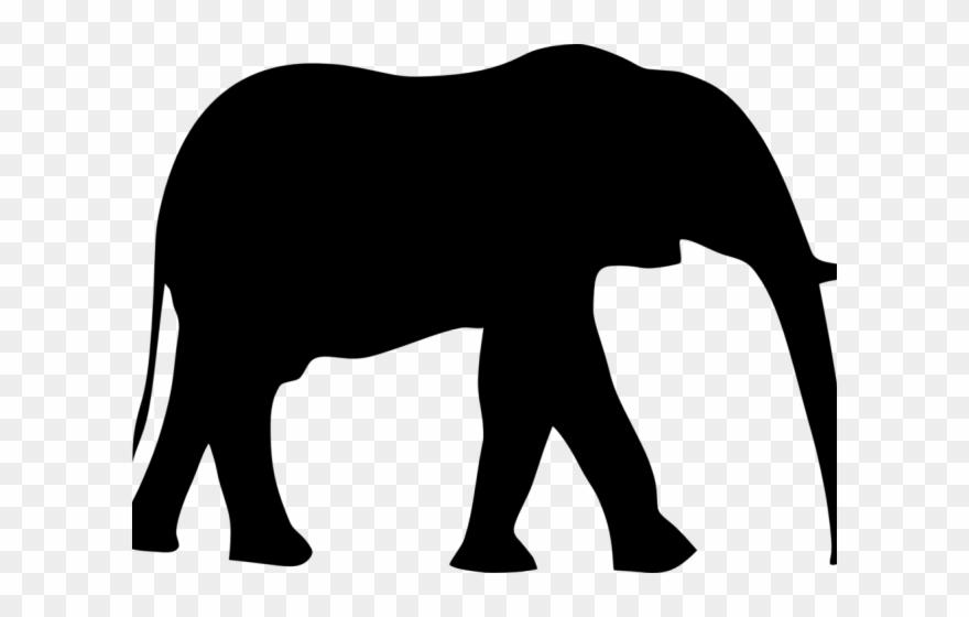 indian-elephant # 4950755