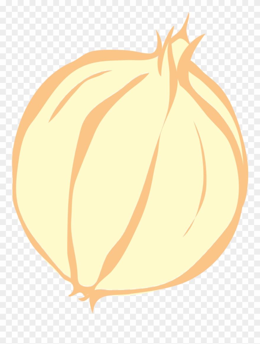 onion # 4915738