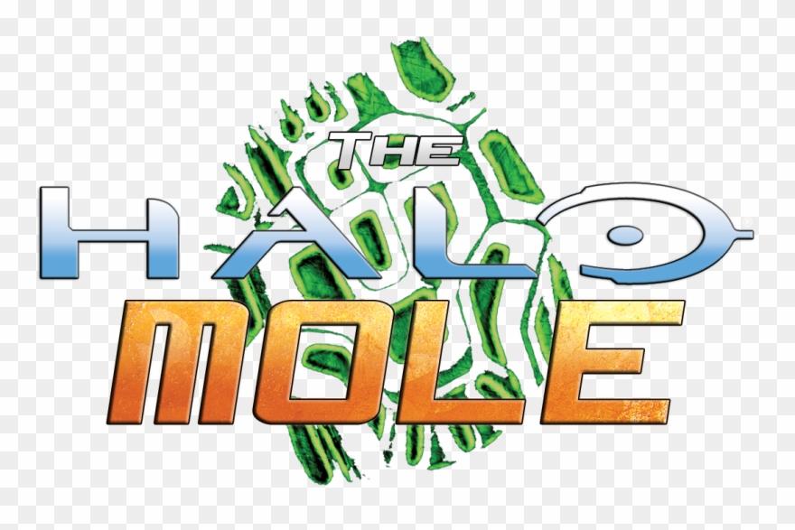 mole # 4907706