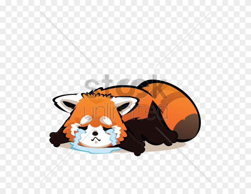 red-panda # 4911338