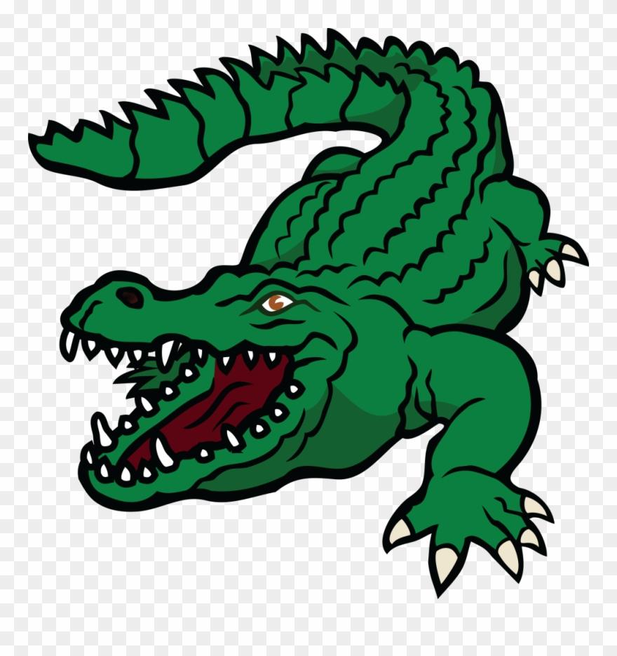 alligator # 4937237