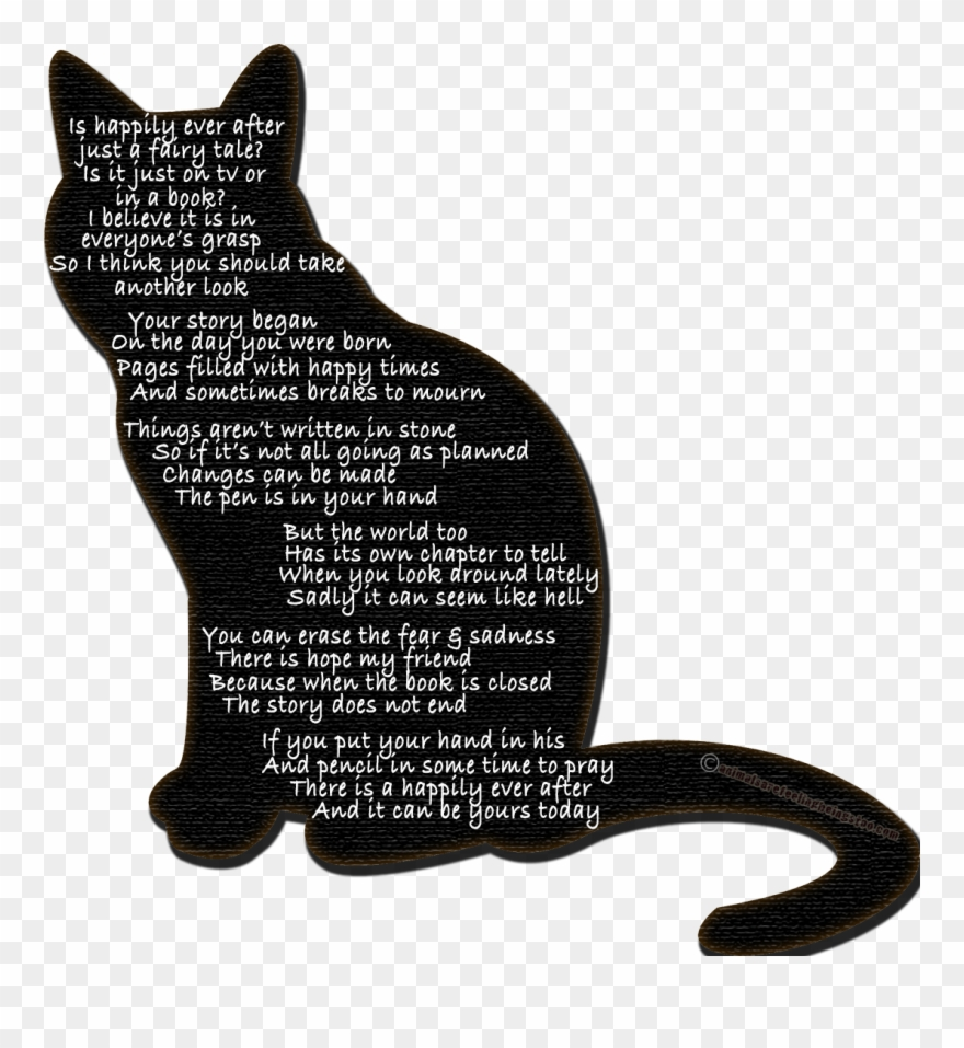 tabby-cat # 4975926