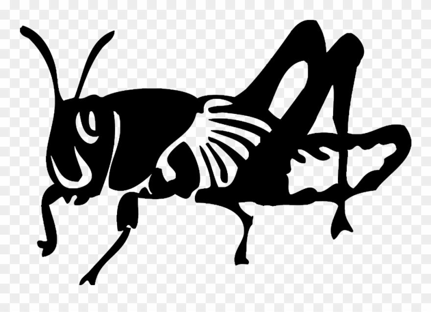 locust # 4977597