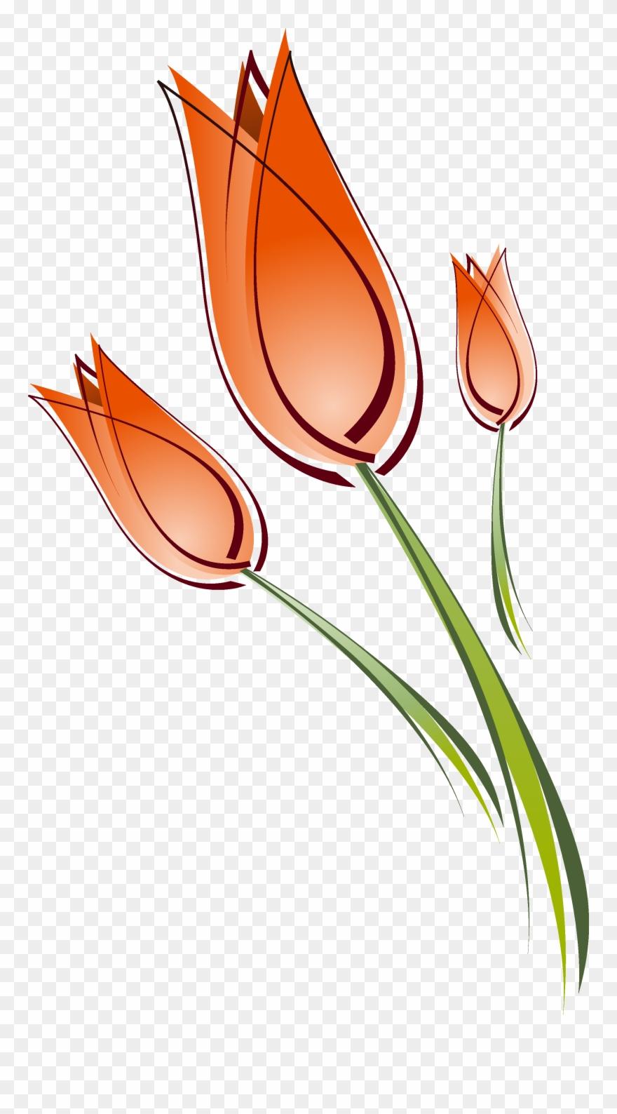tulip # 4979532