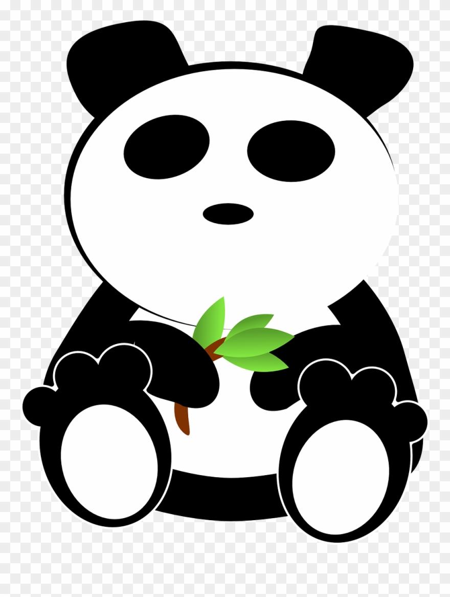 red-panda # 4997553