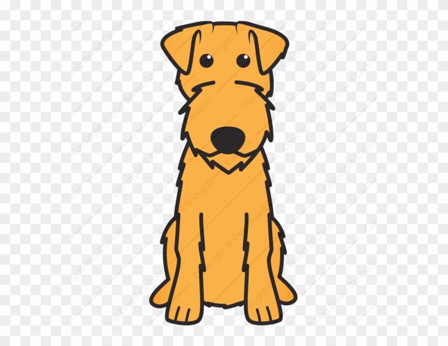 yorkshire-terrier # 4942845