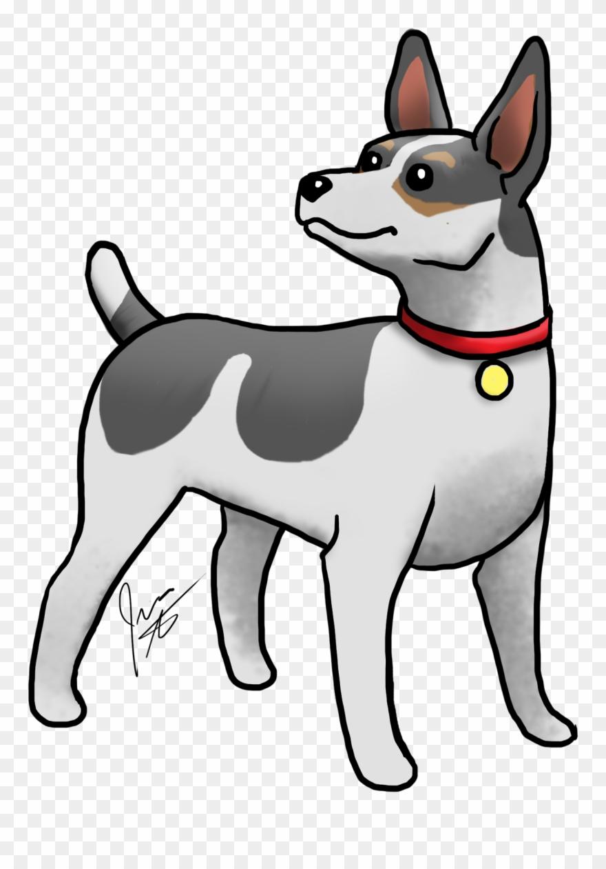 yorkshire-terrier # 4972958