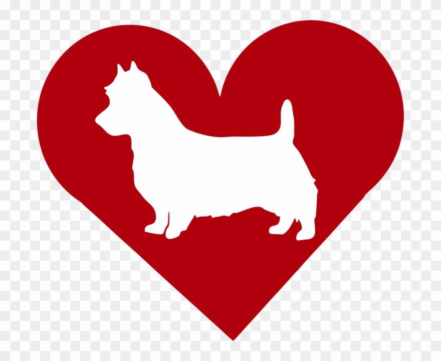 dog-breed # 4970817