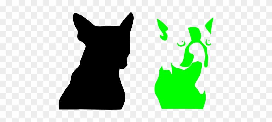 yorkshire-terrier # 4974216